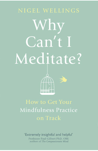 Why Can't I Meditate, Cover